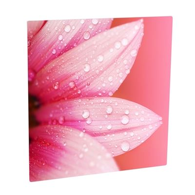 Picture of ChromaLuxe Aluminum Photo Panels Gloss White - 8in x 8in (10-Panels)