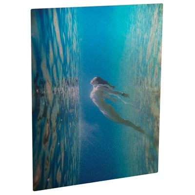 Picture of ChromaLuxe Aluminum Photo Panels Clear Gloss - 10in x 10in (10-Panels)