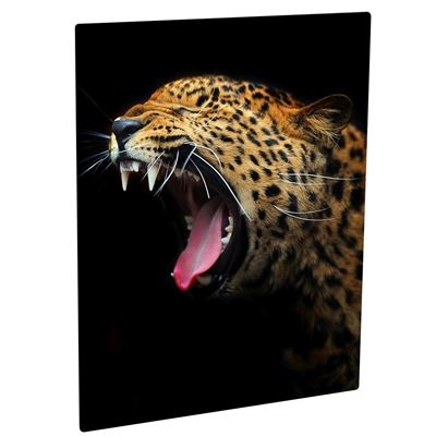 Picture of ChromaLuxe Aluminum Photo Panels Semi-Gloss White - 8in x 10in (10-Panels)