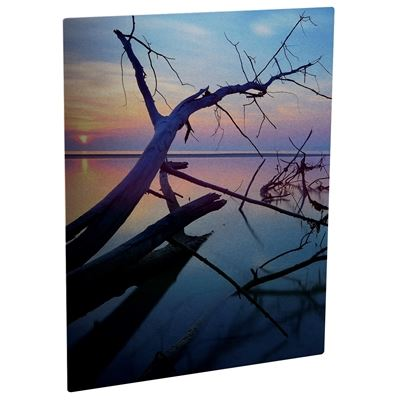Picture of ChromaLuxe Aluminum Photo Panels Semi-Gloss Clear - 10in x 10in (10 Panels)